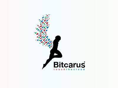 Bitcarus